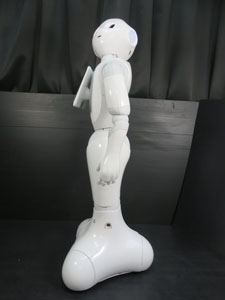 softbank ソフトバンク ペッパー pepper 一般販売モデル 販売