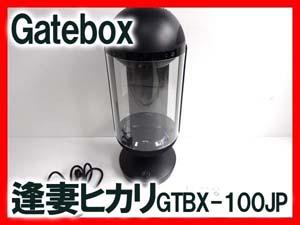 Gatebox 逢妻ヒカリ GTBX-100JP 販売